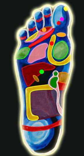 Foot map showing some of the main reflexology points in different colours